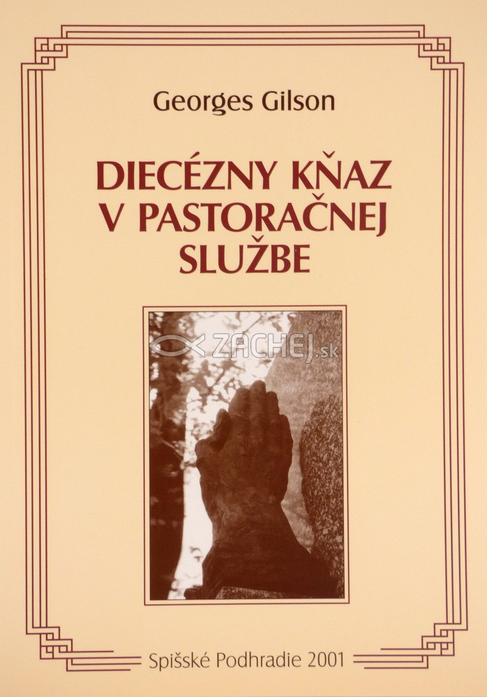 Diecézny kňaz v pastoračnej službe