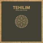 Tehilim - Žalmy krále Davida - kniha + CD
