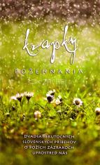 Kvapky požehnania - Dvadsať skutočných slovenských príbehov o Božích zázrakoch uprostred nás