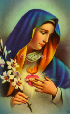 Obrázok: Matka Božia (316/200) - Denné prosby k Matke Božej, laminovaný