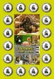 Pexeso - Zoo 1.díl