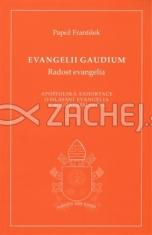 Evangelii gaudium (Radost evangelia) - Apoštolská exhortace o hlásání evangelia v současném světě