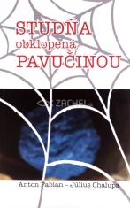 Studňa obklopená pavučinou (cyklus C) - Úvahy inšpirované evanjeliom