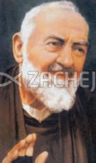 Obraz na dreve: Sv. Páter Pio (ODZ043)