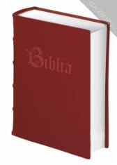 Malá Biblia - ilustrovaná
