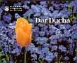 Miniperly - Dar Ducha