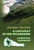A Castaway in the Wilderness - A Survival Handbook
