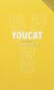 Youcat (flexi väzba) - Katechizmus katolíckej cirkvi pre mladých - fotografia 2