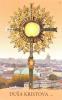 Obrázok lam. (412) s modlitbou (240) - Duša Kristova