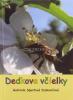 Dedkove včielky - fotografia 2