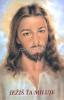 Obrázok: Pán Ježiš (217/246) - Modlitba študenta, laminovaný